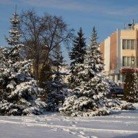 Зима в горде :: Елена Пономарева