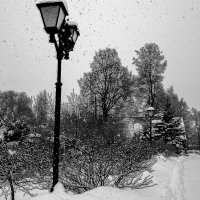 Снегопад однако. :: Sergey Serebrykov
