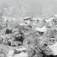 Снег :: -Галина -
