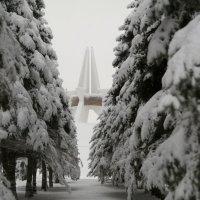 Брянск :: Наталия Лыкова