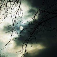 Мутное солнце :: Анна (Анка) Салтыкова