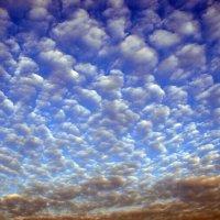 Sky flakes :: Олег Шендерюк