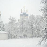 Москва. Коломенское. Метель. :: Игорь Герман