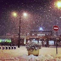 Вечерний снегопад :: Александр
