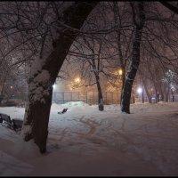 Вечером в городском парке :: Михаил Онипенко