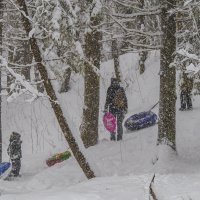 Валит снег,но катания не отменяются :: Сергей Цветков