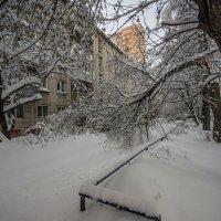Как снег на голову :: Виктор Х.