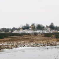 Тригорские холмы. :: Нина Бурченкова.