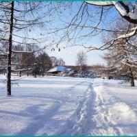 В морозный день... :: Николай Дони