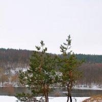 на склоне :: Евгений Гузов
