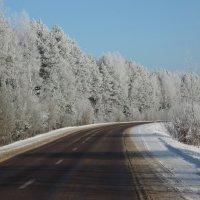 Зима :: Валерия Тарасова