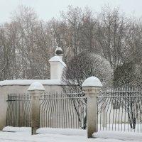 Ограда и деревья :: Денис Масленников