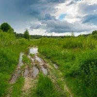 Бежин луг. После дождя. :: Владимир Лазарев