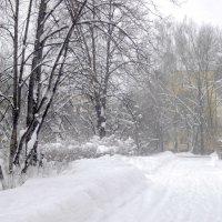 Зима пришла, а мы и не ждали...) :: Лия ☼