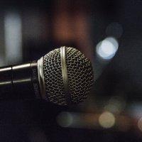 микрофон! :: Василий Шестопалов