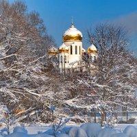 зима пришла ... :: Алексей Михалев