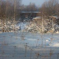 Зимний вид :: Владимир Буравкин