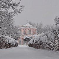 Разукрасила зима - на деревьях бахрома :: Марина Волкова