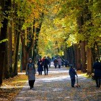 Осень в Останкино :: Михаил Танин