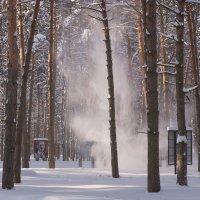 Осыпание снега. :: Виктор Евстратов