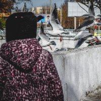 Девочка и чайки :: Наталья и Юрий Родионовы