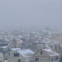 Снежно за окном :: Никита Санов