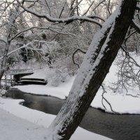 Природа в феврале. :: ТАТЬЯНА (tatik)