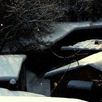 Под снегом :: Tanja Gerster