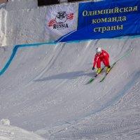На пути к олимпийским победам :: Артём Удодов