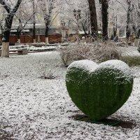 Нет зимы :: Игорь Сикорский