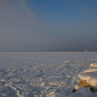 февральским деньком на заливе :: Валентина Папилова