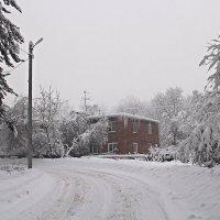 Просто зима... :: Лара (АГАТА)