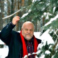 В лесу на опушке. :: Михаил Столяров