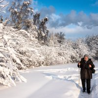 Белый лес и фотографиня. :: Владимир Безбородов