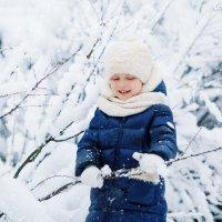 После снегопада... :: Елена Рябчевская