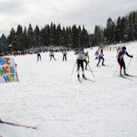 лыжня России ждёт вас, друзья :: леонид логинов