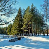 Где-то в Екатерининском Парке... :: Sergey Gordoff
