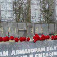 Мемориал Авиаторам балтики :: Мария Кузнецова (Суворова)