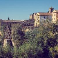 Остатки старинной арабской мельницы :: Владимир Брагилевский
