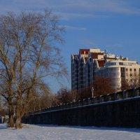 Морозное утро :: Алексей Афанасьев