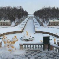 Зима в Петергофе :: Сергей Григорьев