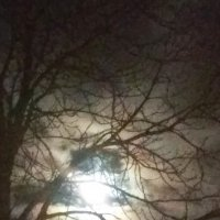 Февральская луна. :: Александр