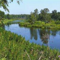 Река Миасс у села Кайгородово, август. :: Александр Садовский