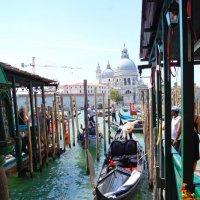 Изумрудные  воды Венеции :: Людмила Шустова