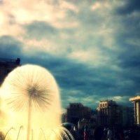 Киев :: Наталья Гонтарь