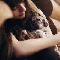 любимый щеночек...) :: Катюшка Максимова (Кусова)