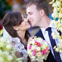 Свадебная :: Наталья Михеева
