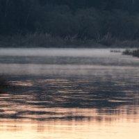 Туман над рекой :: Дмитрий Дербенев