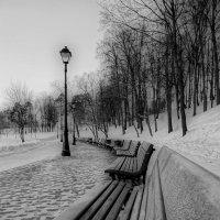 Морозная тишина :: Алексей Соминский
