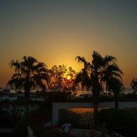 Восход солнца :: Ирина Приходько